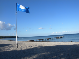 Blå Flag-arrangementer