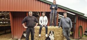 Besøg en minkfarm