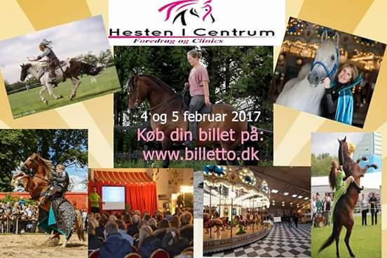 Clinic og foredrag for hestes ejere