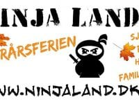 Ninjaland.