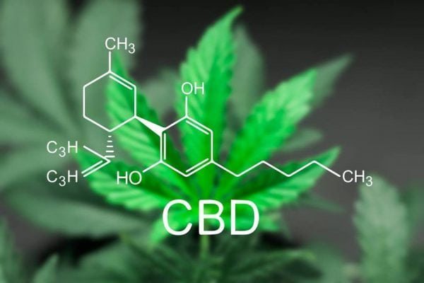 Slagelse - Infomøde CBD Cannabis olie
