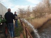 Sydsjællands Ørredfond udsætter fisk i blandt andet åer og andre vandløb herhjemme. Foto: Privat