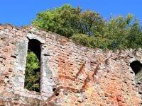 Efteråret indtager sin plads i ruinerne