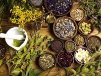 28 pct. slagelseanere har et højt stressniveau. Samtidig melder landets største producent af naturmidler om en fordobling af efterspørgslen på deres urtebaserede produkter mod stress i efteråret. Foto: PR.